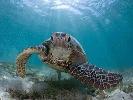 Mar y Tierra Deportes de aventura Mar y Tierra