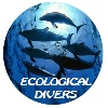 Club de Buceo Ecological Divers Deportes de aventura Club de Buceo Ecological Divers