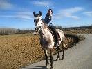Actividades de aventura Catalu�a - Cavalls de Malavella