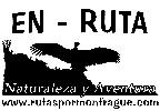EN-RUTA Rutas por Monfrag�e - Actividades de aventura en Malpartida de Plasencia - C�ceres