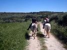 Actividades de aventura Catalu�a - CAL PERELL� Hostal Rural Eq�estre