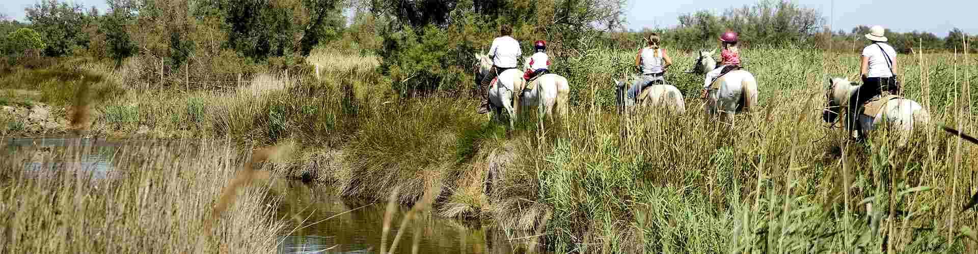 rutas en caballo en centrosdeportes de Navarredonda