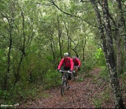 Mountain Bike en Menorca
