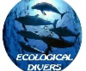 Club de Buceo Ecological Divers Empresa Club de Buceo Ecological Divers